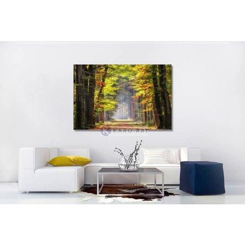 Karo-art Afbeelding op acrylglas - Ochtendwandeling in het bos , Groen bruin , 3 maten , Wanddecoratie