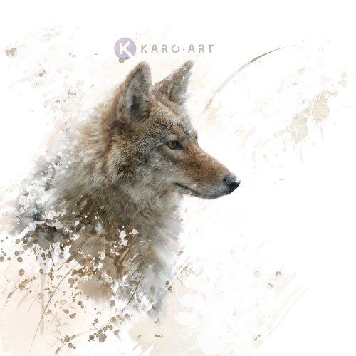 Karo-art Afbeelding op acrylglas - Wolf in beeld (incl bevestigingsmateriaal)