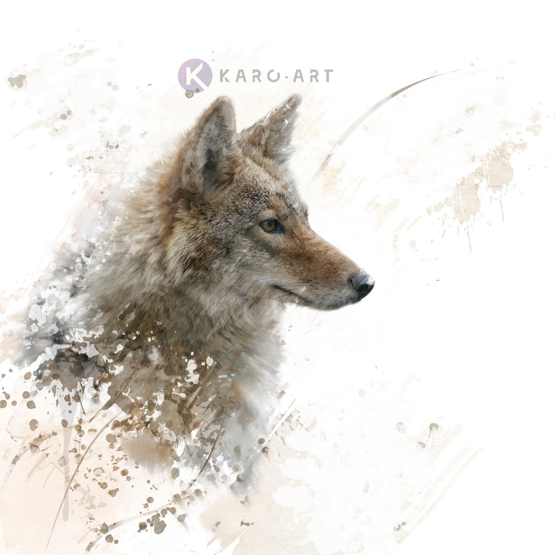 Afbeelding op acrylglas - Wolf in beeld (incl bevestigingsmateriaal)