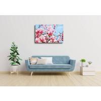 Karo-art Afbeelding op acrylglas - Roze magnolia in volle bloei