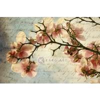 Karo-art Afbeelding op acrylglas - Magnolia boomtak met een verouderd papieren effect en een oud handschrift