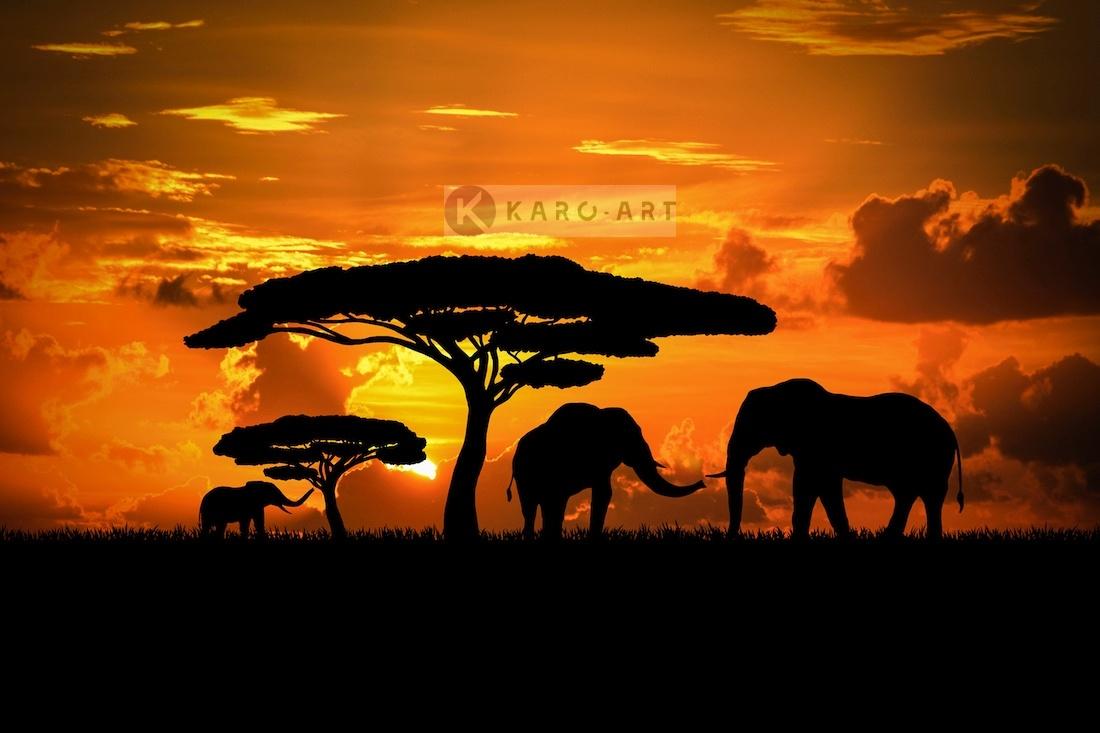 Afbeelding op acrylglas - Olifanten familie bij zonsondergang