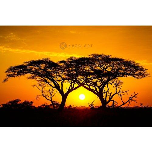 Karo-art Afbeelding op acrylglas - Zonsondergang in Afrika