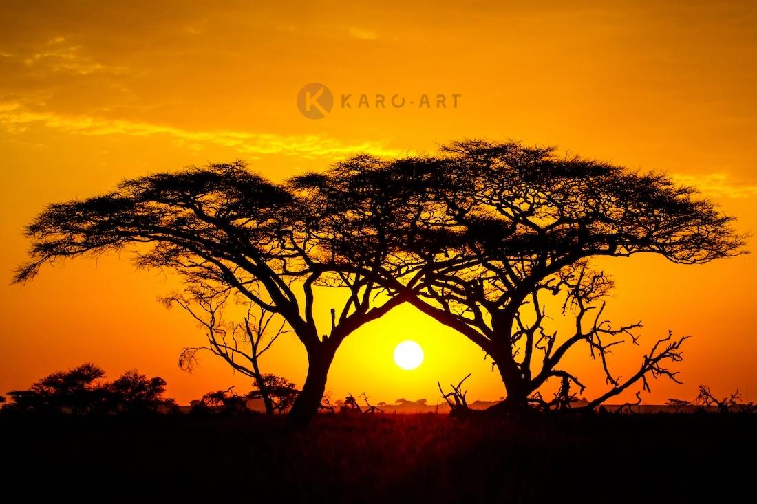 Afbeelding op acrylglas - Zonsondergang in Afrika