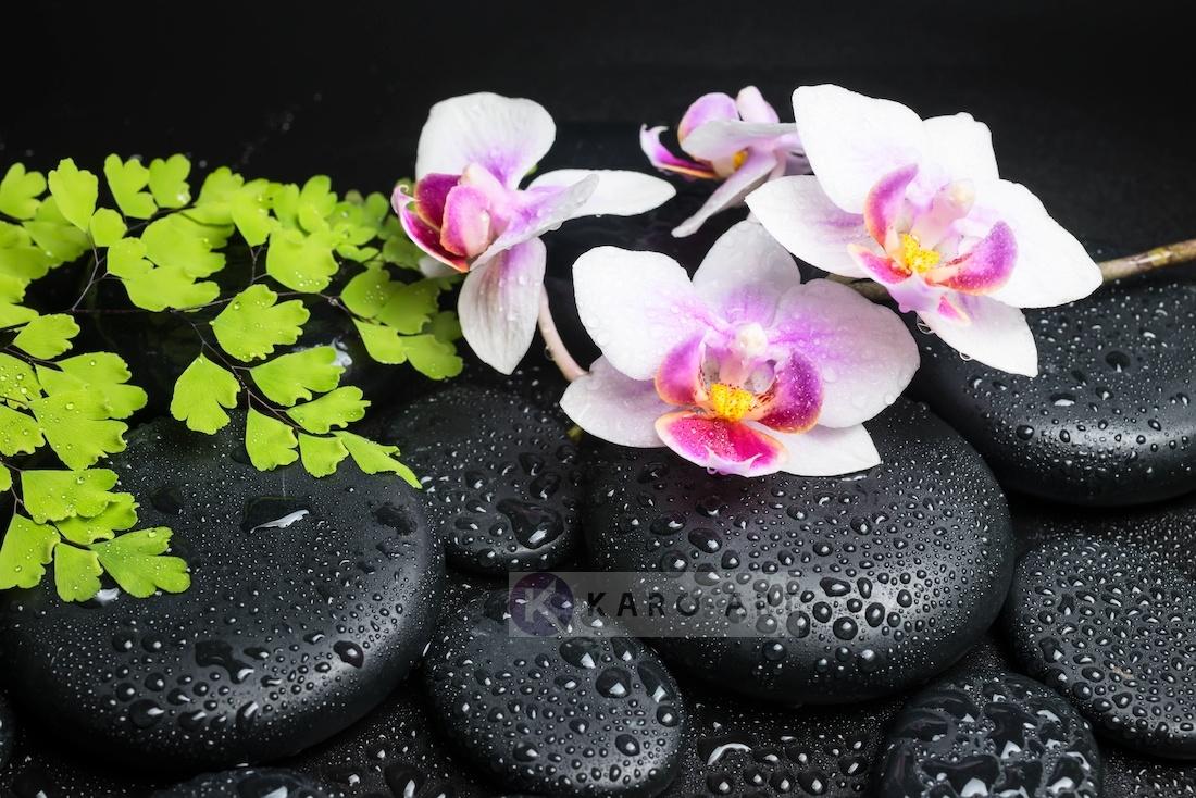 Afbeelding op acrylglas - Zen stenen met orchidee, inspiratie
