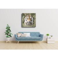 Karo-art Afbeelding op acrylglas - Siberische tijger portret