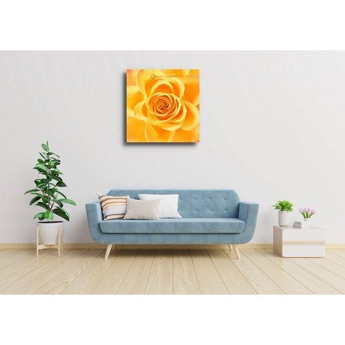 Karo-art Afbeelding op acrylglas - Roos in het geel, bloesem