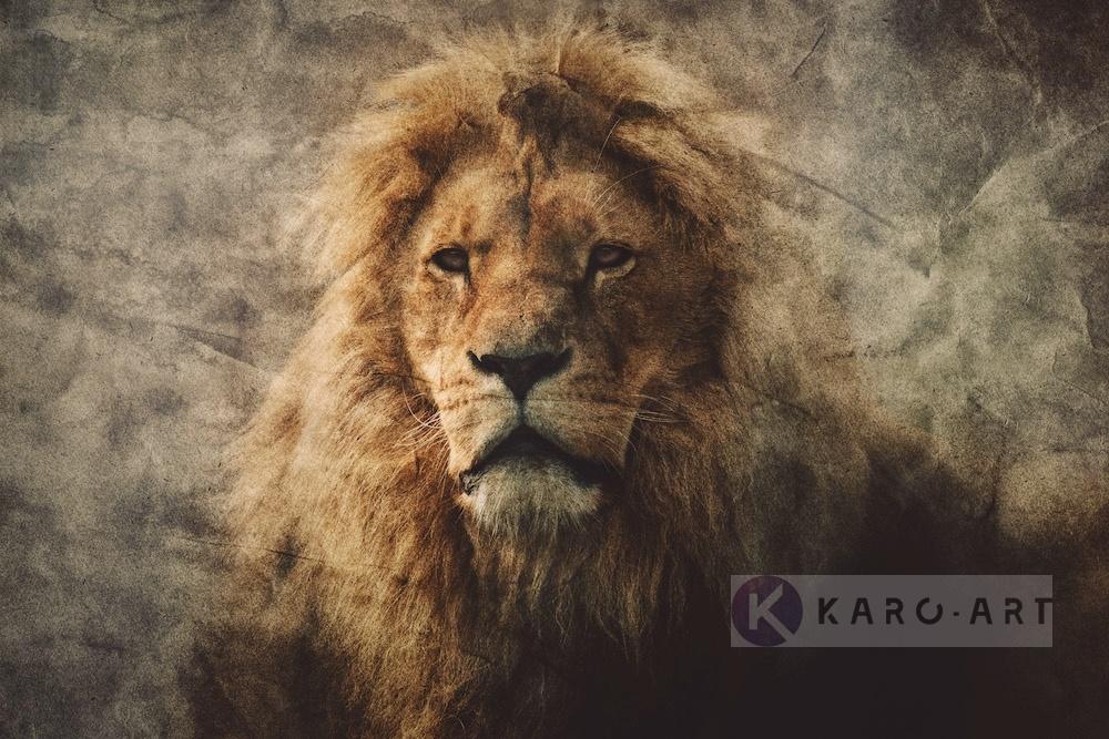 Afbeelding op acrylglas - Majestueuze Leeuw in een vintage portret