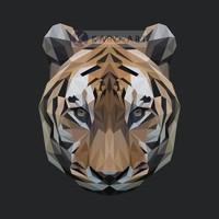Karo-art Schilderij -  Tijger, digitaal , Bruin wit zwart , 3 maten , Premium print