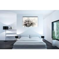 Karo-art Afbeelding op acrylglas - Sneeuwluipaard, digitaal schilderij, Zwart wit , 3 maten , Premium print