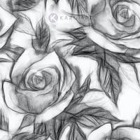 Karo-art Afbeelding op acrylglas  - Bloemmotief met rozen, Zwart wit , 3 maten , Wanddecoratie