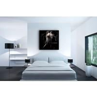 Karo-art Afbeelding op acrylglas - Olifant , Zwart wit , 3 maten , Premium print