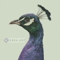 Karo-art Schilderij - Pauw , Blauw groen , 3 maten , Wanddecoratie