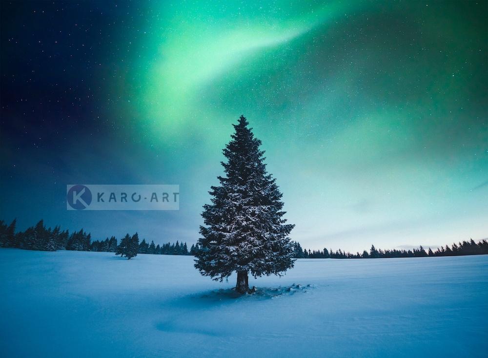 Afbeelding op acrylglas - Noorder licht Kerstboom , Blauw groen , 3 Maten , Wanddecoratie