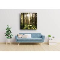 Karo-art Afbeelding op acrylglas  - Naaldhouten bos , Groen bruin wit , 3 maten , Premium print