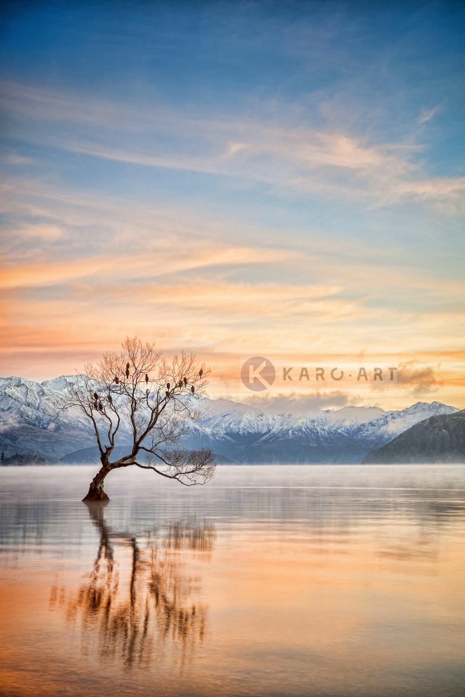 Schilderij - Meer Wanaka Otago, Nieuw-Zeeland , Multikleur , 3 maten , Premium print