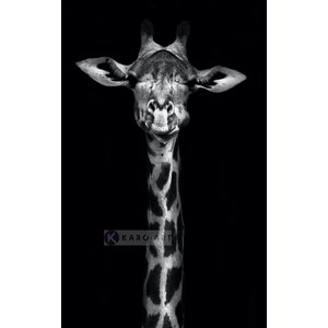 Karo-art Schilderij - Giraf