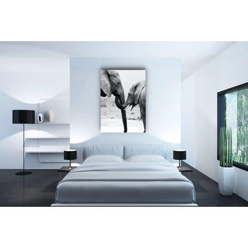 Karo-art Afbeelding op acrylglas - Olifant met kind
