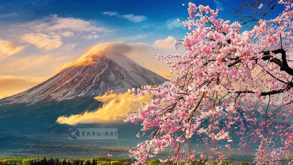 Schilderij - Vulkaan Fuji, Bloesem, Japan , Multikleur , 3 maten , Premium print