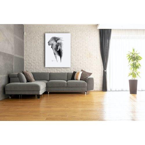 Karo-art Schilderij - Olifant op witte achtergrond