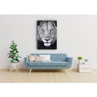 Karo-art Schilderij - Leeuw