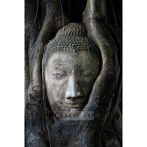 Karo-art Schilderij - Boeddha in boom , Zwart grijs , 3 maten , Wanddecoratie