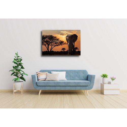 Karo-art Schilderij - Olifant bij zonsondergang , Multikleur , 3 maten , Wanddecoratie