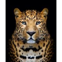 Karo-art Schilderij - Luipaard , Multikleur , 3 maten , Premium print
