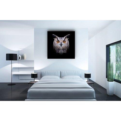 Karo-art Afbeelding op acrylglas - Uil, digitaal