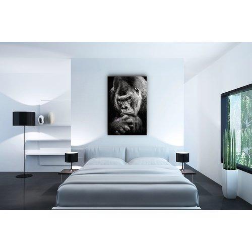 Karo-art Afbeelding op acrylglas - Gorilla