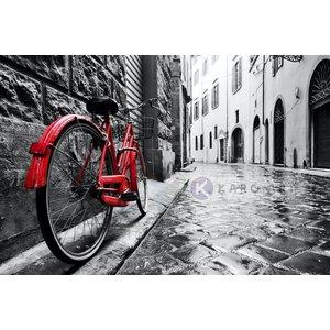 Karo-art Schilderij - Rode fiets