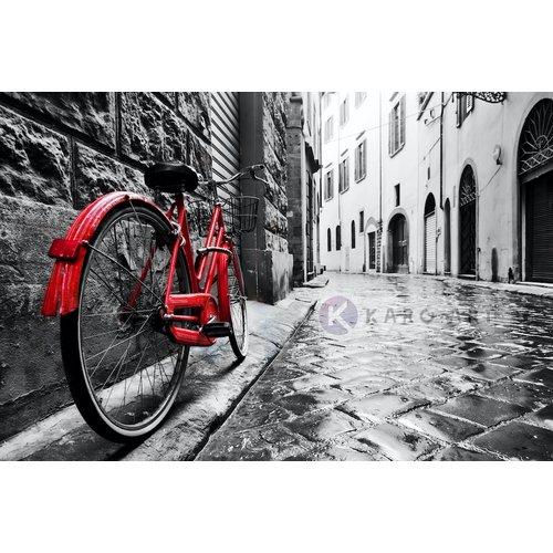 Karo-art Afbeelding op acrylglas - Rode fiets