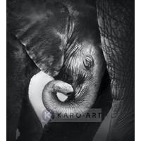 Karo-art Afbeelding op acrylglas - Olifanten knuffel