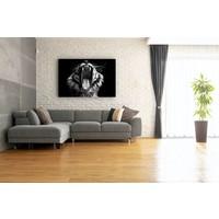 Karo-art Afbeelding op acrylglas  - Gapende Tijger