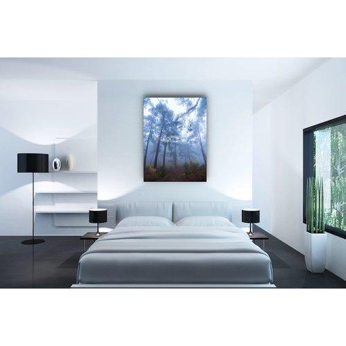 Karo-art Afbeelding op acrylglas - Mistig Bos