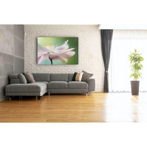 Karo-art Schilderij - Zacht roze Kersenbloesem