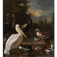 Melchior d'Hondecoeter - Het drijvend veertje 90x100cm , Rijksmuseum, premium print, print op canvas, oude meester