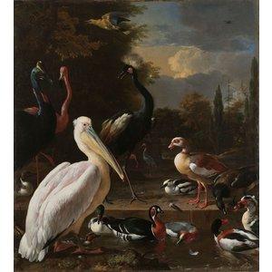 Melchior d'Hondecoeter - Het drijvend veertje 60x90cm , Rijksmuseum, premium print, print op canvas, oude meester