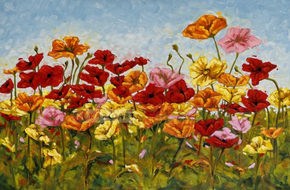 Schilderij - Kleurrijke klaprozen, print op canvas