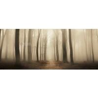 Karo-art Schilderij - Mistig bos, Beige Bruin , 2 maten , print op canvas, premium print
