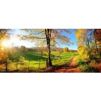 Karo-art Schilderij - Herfst, panorama, groen,blauw