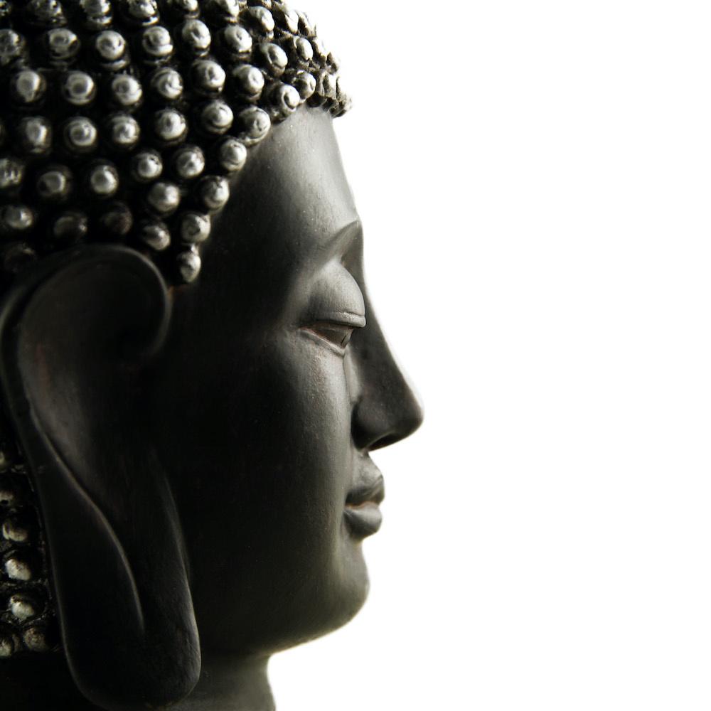Schilderij - Boeddha profiel