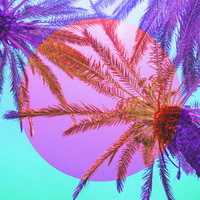 Karo-art Schilderij - Palmbomen gekleurd, paradijs, paars, roze , 3 maten , Wanddecoratie