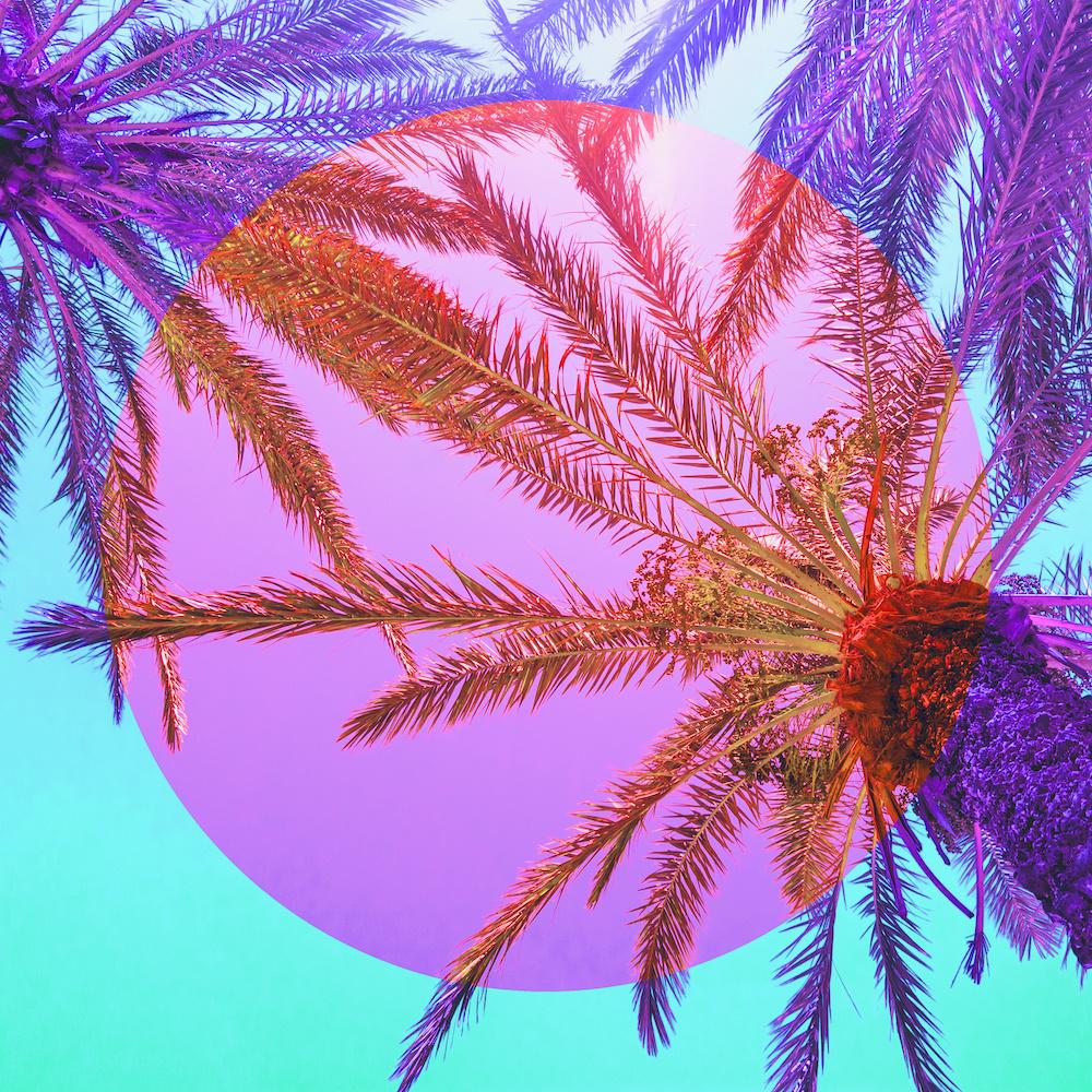 Schilderij - Palmbomen gekleurd, paradijs, paars, roze