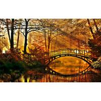 Karo-art Fotobehang- Herfst bos, bruggetje over het water