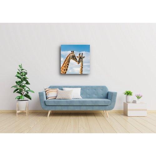 Karo-art Schilderij - Giraffen