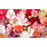 Karo-art Fotobehang- Bloemen boeket, roze