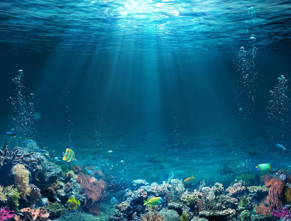 Karo-art Fotobehang- Diep in de zee