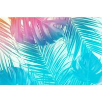 Karo-art Fotobehang - Neon Jungel