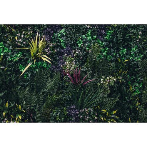 Karo-art Fotobehang - Jungle II